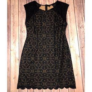 Ladakh Black Lace Dress, Size L